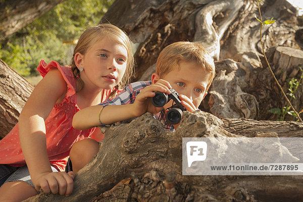 entfernt  sehen  Junge - Person  klein  Fernglas  5-9 Jahre  5 bis 9 Jahre  Mädchen