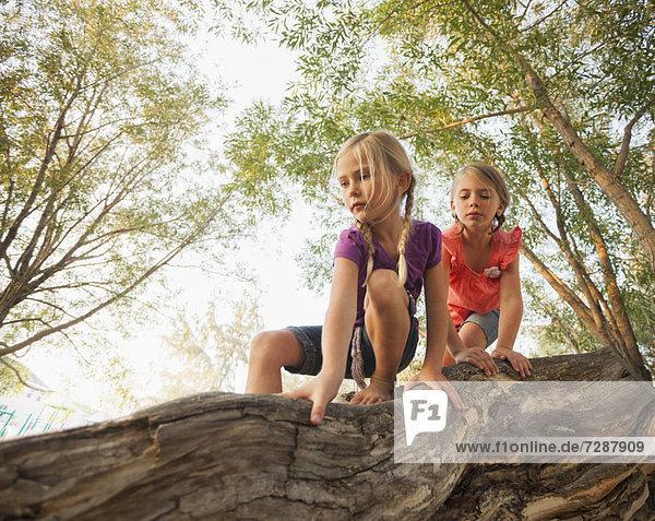Baum  Querformat  Ast  5-9 Jahre  5 bis 9 Jahre  klettern