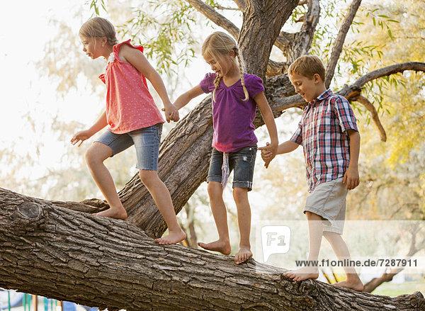 Zusammenhalt gehen Baum balancieren halten Ast 5-9 Jahre 5 bis 9 Jahre