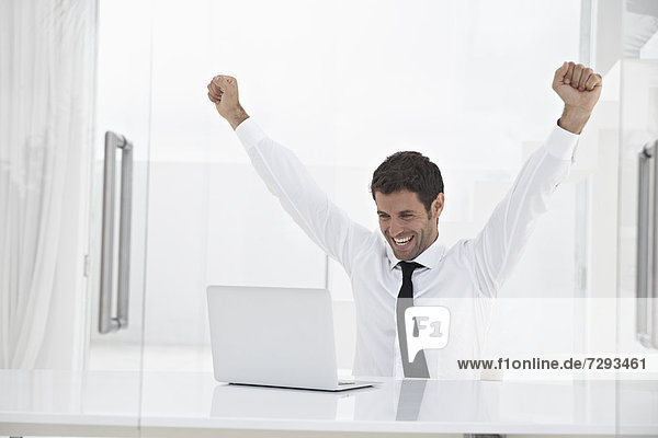 Spain  Businessman excited while looking laptop  smiling