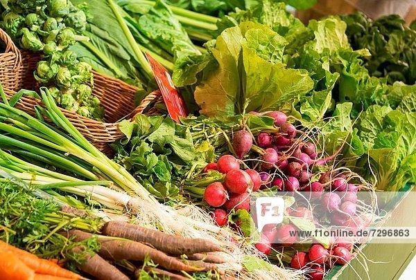Frische  Gemüse  Bauernhof  Hof  Höfe  Markt