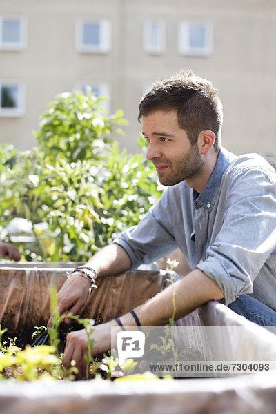 Junger Mann beim Gärtnern im Stadtgarten