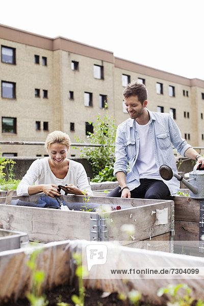 Glückliches junges kaukasisches Paar im Stadtgarten