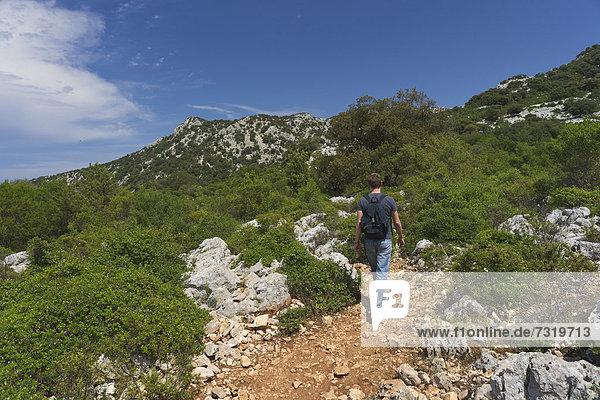 Ein Wanderer auf der Hochebene Su Golgo  Baunei  Provinz Ogliastra  Sardinien  Italien  Europa