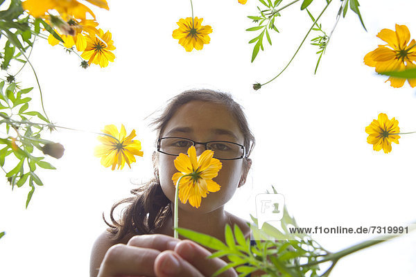 Mädchen  11 Jahre riecht an Blumen