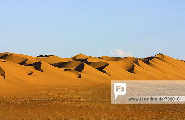 Namib Wüste  Namib Naukluft Park  Namibia  Afrika