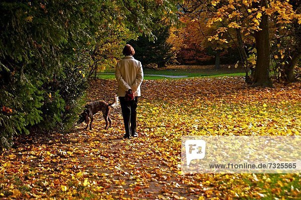 Frau bedecken gehen Weg Hund trocken Genf Schweiz