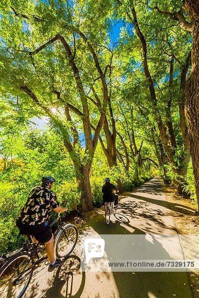 Baum  Bauernhof  Hof  Höfe  Fernverkehrsstraße  Geschichte  Hotel  Pflanze  Fahrrad  Rad  Menschenreihe  grün  Albuquerque