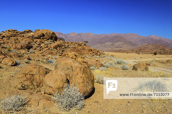 Landschaft beim Brandberg  Damaraland  Namibia  Afrika
