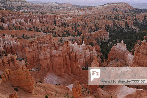 Felsformationen und Hoodoos  Thors Hammer  Sunset Point  Nationalpark Bryce Canyon  Utah  Vereinigte Staaten von Amerika  USA