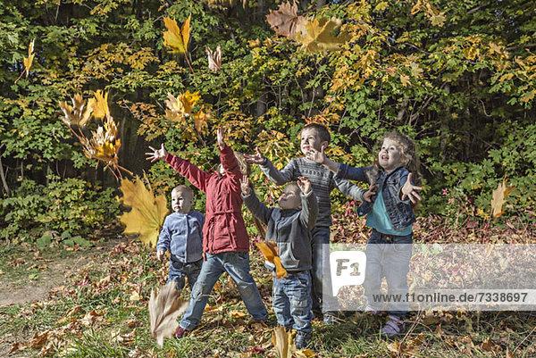 Fünf Kinder  die versuchen  fallende Herbstblätter zu fangen.