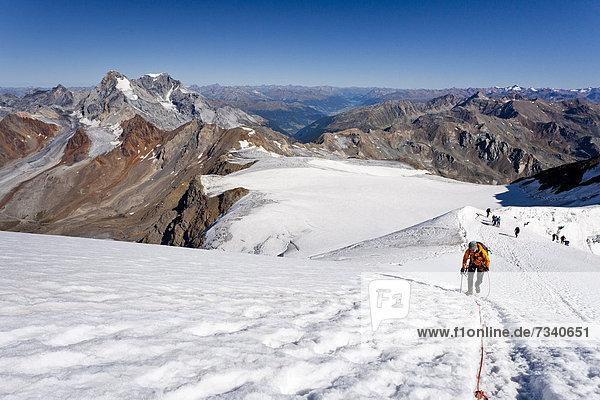 Bergsteiger beim Aufstieg zum Monte Cevedale  hinten der König und Ortler  Südtirol  Italien  Europa