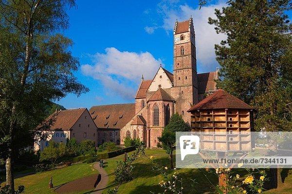 Baden-Württemberg  Evangelische Stiftskirche  Alpirsbach  Benediktinerabtei  Schwarzwald  Deutschland