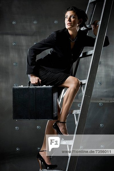 Geschäftsfrau  Leiter  Leitern