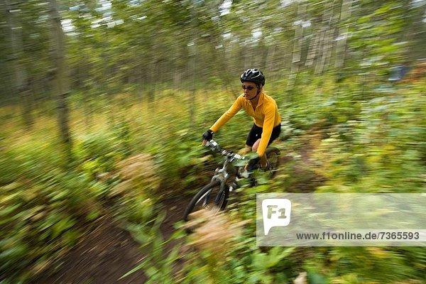 Profil Profile Frau radfahren Wald Erwachsener