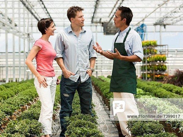 USA  Utah  Salem  couple talking to gardener in plant nursery