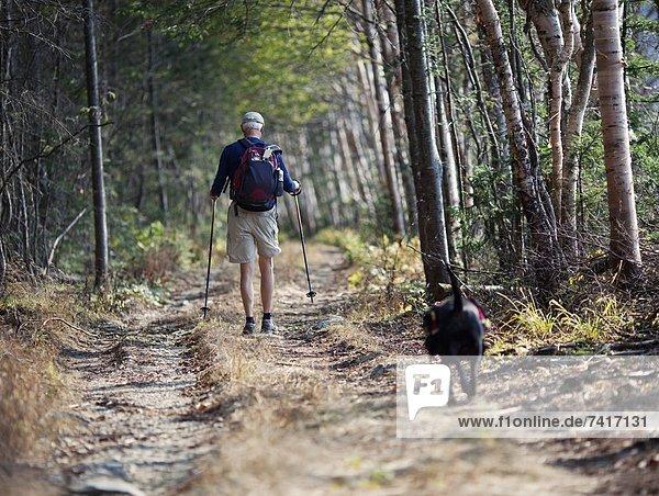 Rucksack  Spur  Laubwald  Mann  gehen  Hund  schmutzig  Kleidung  vorwärts  Maine