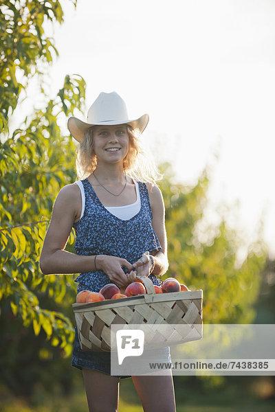Europäer  Frau  Frucht  Obstgarten  aufheben