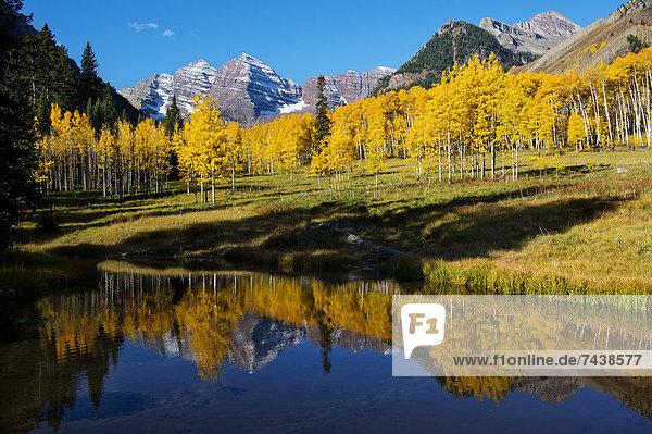 Stilleben  still  stills  Stillleben  Wasser  Berg  Baum  gelb  Spiegelung