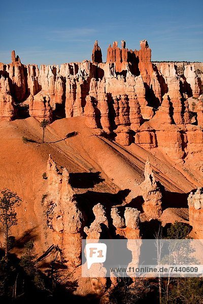 Vereinigte Staaten von Amerika  USA  Felsbrocken  bunt  Anordnung  Bryce Canyon Nationalpark  Schlucht