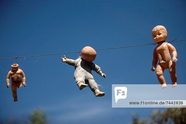 Lebensmittel Wohnhaus drehen klein spät fließen hängen Tagesausflug Insel Gast Dose Entdeckung Reise Angst Puppe Schutz Wachstum untergehen künstlich Geist Xochimilco