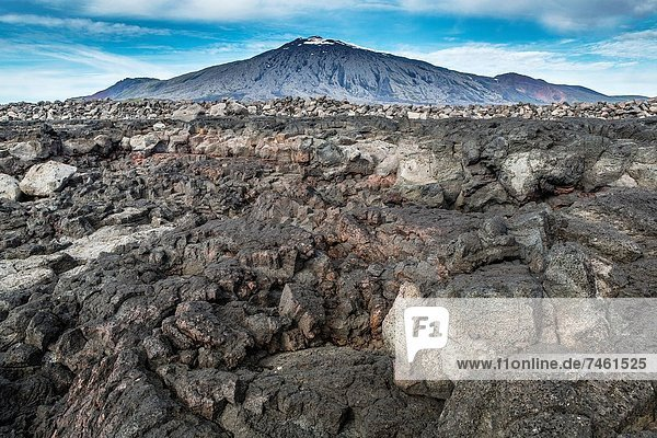 Lava rock landscape with Snaefellsjokull in the background  Snaefellsnes Peninsula  Iceland