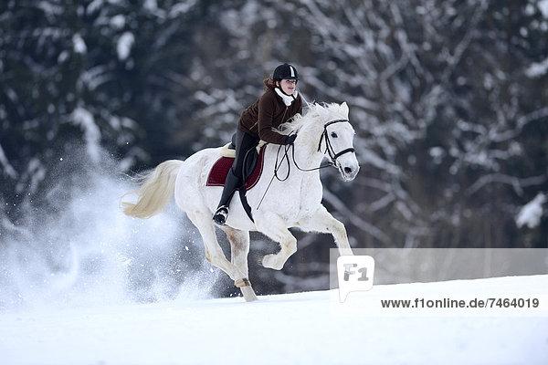 Reiterin mit ihrem Pferd  Oberpfalz  Bayern  Deutschland  Europa