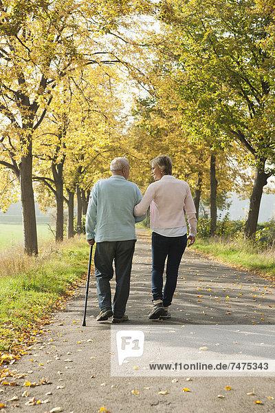 Senior Senioren Frau gehen Menschlicher Vater reifer Erwachsene reife Erwachsene Herbst