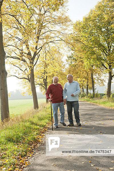 Senior Men Walking on Tree-lined Path in Autumn  Lampertheim  Hesse  Germany