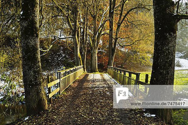 Eschach River Valley  Black Forest  Black Forest  Schwarzwald-Baar  Baden-Wurttemberg  Germany