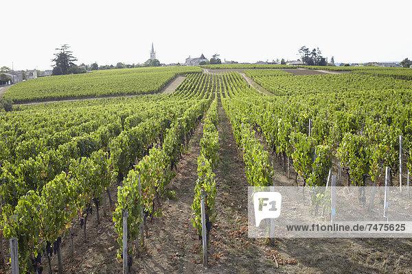Frankreich  Aquitanien  Gironde