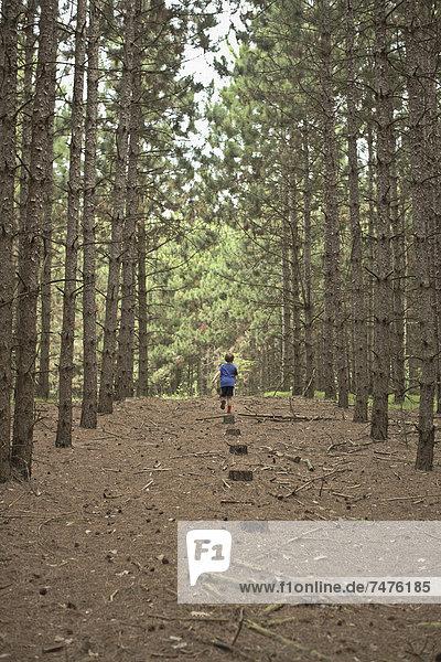 gehen  Junge - Person  Weg  Wald  Kanada  Ontario