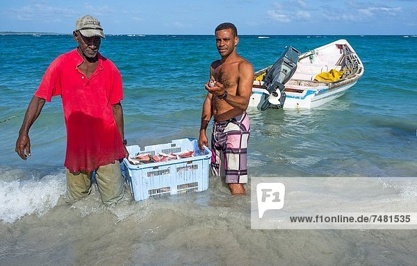 Fisch  Pisces  Frische  fangen  abladen  Fischer  Festung