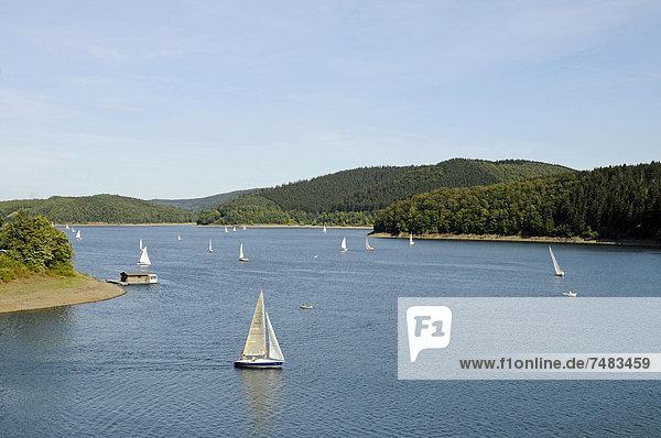 Segelboote  Biggetalsperre  Olpe  Naturpark Ebbegebirge  Sauerland  Nordrhein-Westfalen  Deutschland  Europa  ÍffentlicherGrund