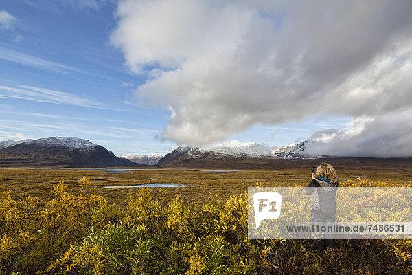USA  Alaska  Tourist taking photograph of Alaska Range in autumn