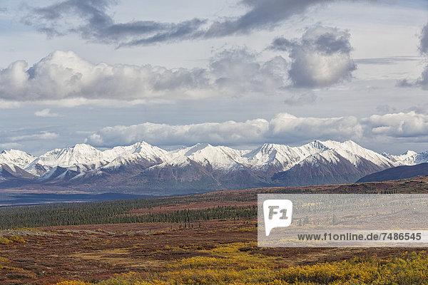 USA  Alaska  Landscape along Denali Highway in autumn with Alaska Range
