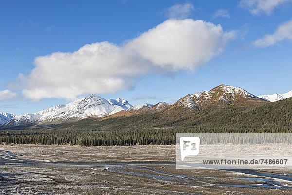 USA  Alaska  View of Denali National Park