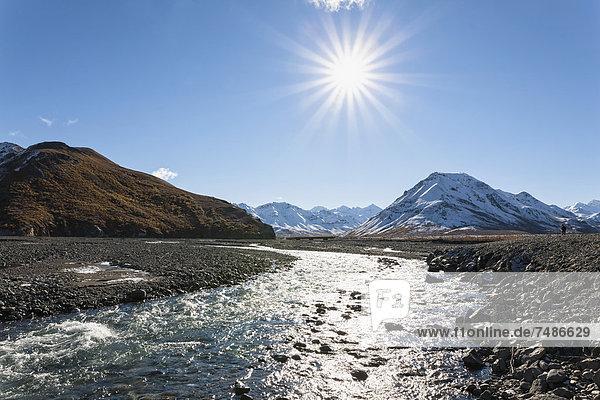 USA  Alaska  Blick auf den Toklat River im Denali Nationalpark