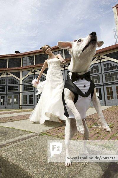 Blumenstrauß  Strauß  Schönheit  Braut  Blume  Hochzeit  halten  weiß  Kleid