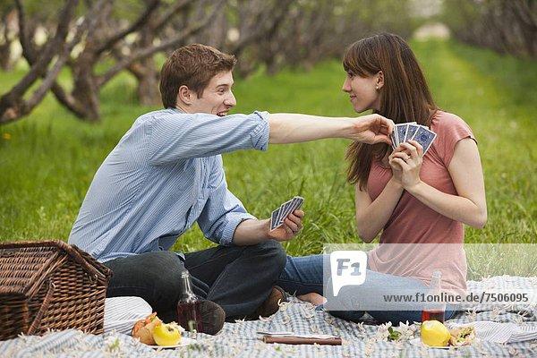 Vereinigte Staaten von Amerika  USA  Spiel  Picknick  Karte  jung  Obstgarten  Utah