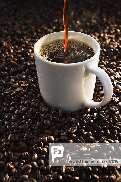 Kaffeebohne  Studioaufnahme  Tasse  eingießen  einschenken  Kaffee  Bohne