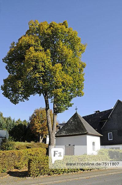 Kreuzkapelle  Drolshagen  Sauerland  Nordrhein-Westfalen  Deutschland  Europa  ÖffentlicherGrund