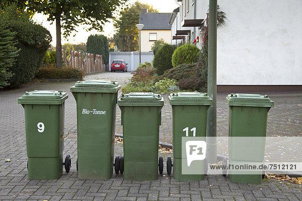 stehend Europa Fernverkehrsstraße Verschwendung Pflanze Seitenansicht Kollektion Deutschland Kamen Nordrhein-Westfalen Ruhrgebiet Nordrhein-Westfalen