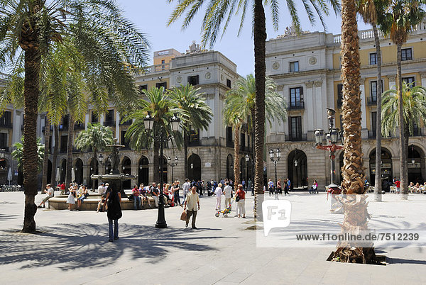 Architekt Plaza Real