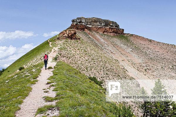 Wanderer beim Aufstieg auf den Cima Verde  Trentino  Italien  Europa