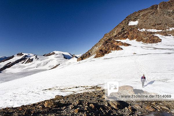 Bergsteiger auf dem Gipfelgrat beim Aufstieg zur Zufallspitz  hinten der Monte Vioz  Südtirol  Italien  Europa Bergsteiger auf dem Gipfelgrat beim Aufstieg zur Zufallspitz, hinten der Monte Vioz, Südtirol, Italien, Europa