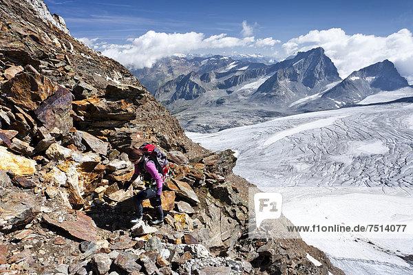Bergsteiger beim Aufstieg zum Schneebiger Nock  hinten die Hochgall  Südtirol  Italien  Europa