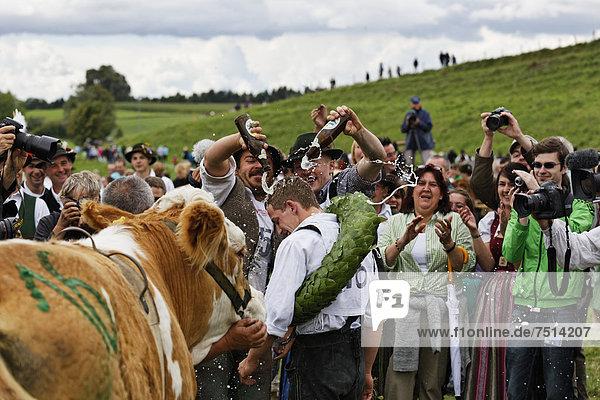 Sieger Martin Breiter  fünftes Münsinger Ochsenrennen  Münsing  Fünfseenland  Oberbayern  Bayern  Deutschland  Europa