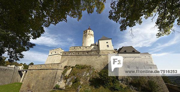 Burg Forchtenstein  Burgenland  Österreich  Europa