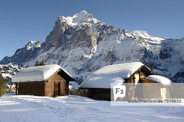 Schweizer Chalets im Winter mit Blick auf das Wetterhorn  Schweizer Alpen  Schweiz  Europa